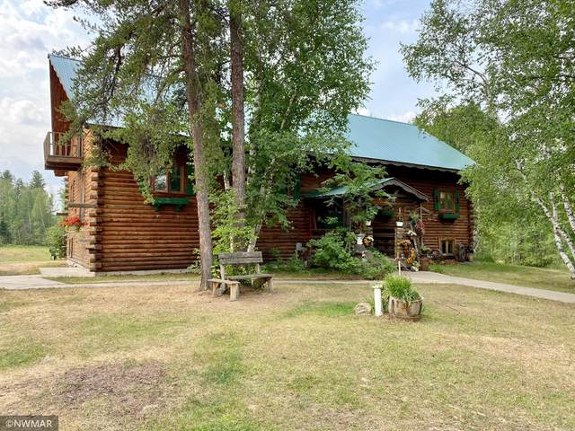 1124 53rd Avenue SW, Williams, MN 56686 (#6071512) :: Bos Realty Group