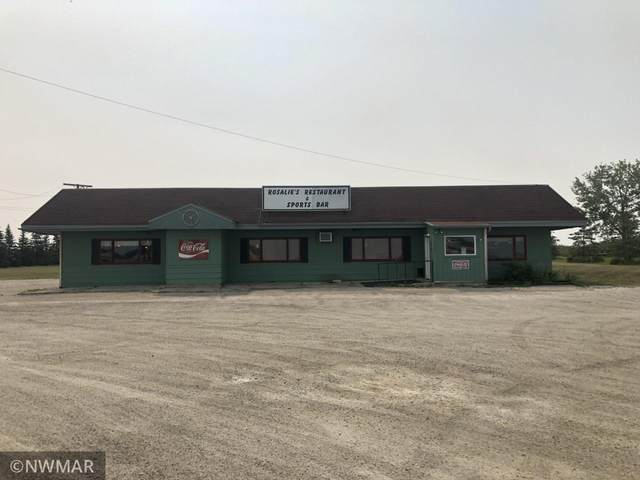 1229 Main Street W, Baudette, MN 56623 (#6071862) :: Bos Realty Group