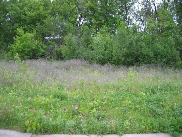 1789 Cheri Court, White Bear Lake, MN 55110 (#6072028) :: Twin Cities Elite Real Estate Group   TheMLSonline
