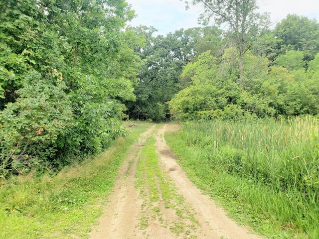 20180 NE Co Road 9, New London Twp, MN 56288 (#6072749) :: Bos Realty Group