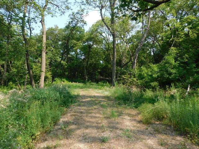 XXXX Hwy 23, Litchfield Twp, MN 55355 (#6073128) :: Bos Realty Group