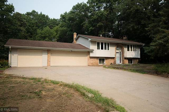 14216 Heather Street NW, Andover, MN 55304 (#6073234) :: Bos Realty Group