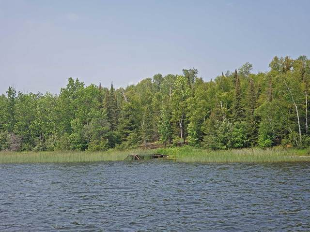 Lot 3, Blk 2 Moccasin Pt Rd, Tower, MN 55790 (#6073361) :: The Preferred Home Team