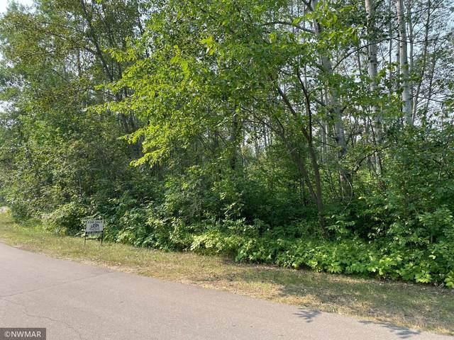TBD Birch Drive S, Lake Twp, MN 56751 (#6074875) :: Bos Realty Group