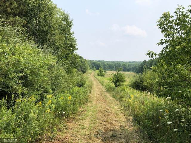 42 Acres 650th Street, River Falls, WI 54022 (#6075426) :: The Duddingston Group