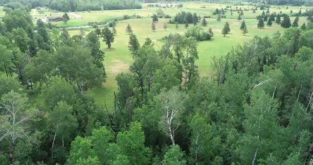 Lot 3 Eagle Drive, Bigfork, MN 56628 (#6076411) :: Carol Nelson | Edina Realty