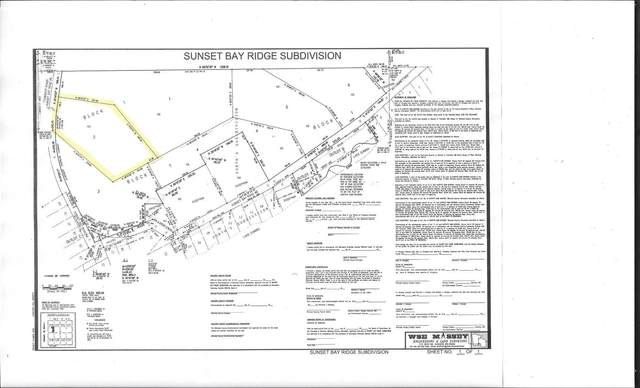 xxxx Sunset Bay Road, Zumbro Falls, MN 55991 (#6076545) :: Holz Group