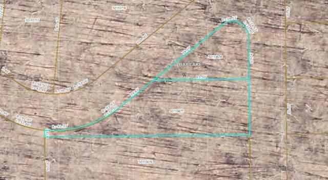 L1 & L2 White Birch Road, Deerwood, MN 56444 (#6076601) :: The Pietig Properties Group