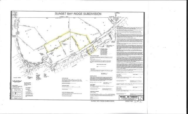 XXXX Sunset Bay Road, Zumbro Falls, MN 55991 (#6076617) :: Holz Group