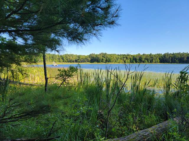 XXX Tame Fish Lake Road, Deerwood, MN 56444 (#6083128) :: The Pietig Properties Group