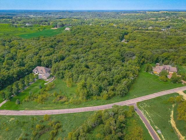 8993 Whisper Creek Trail, Greenfield, MN 55373 (#6084985) :: Twin Cities Elite Real Estate Group | TheMLSonline