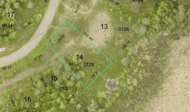 Lot 14 Waters Edge Drive NW, Walker, MN 56484 (#6085028) :: Servion Realty
