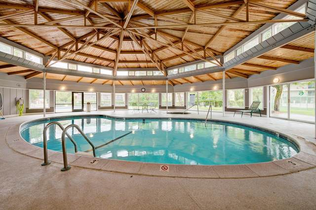 10401 Cedar Lake Road #202, Minnetonka, MN 55305 (#6085198) :: Lakes Country Realty LLC
