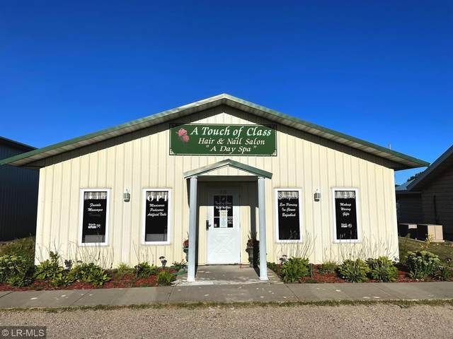 416 S Lake Avenue, Battle Lake, MN 56515 (#6085582) :: The Jacob Olson Team