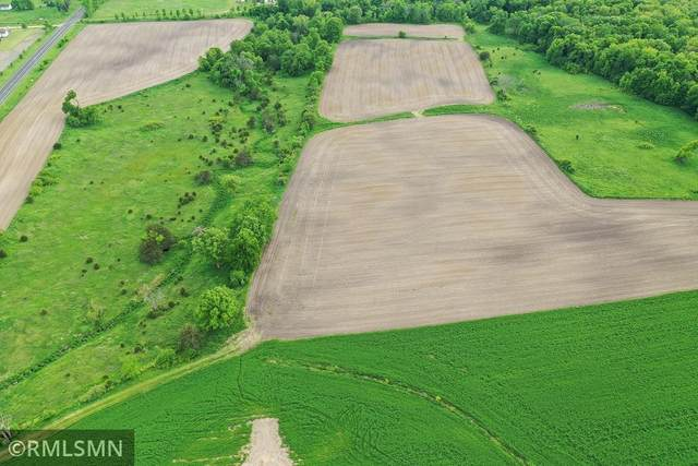 35XXXL2B1 Oasis Road, Lindstrom, MN 55045 (#6086454) :: Lakes Country Realty LLC