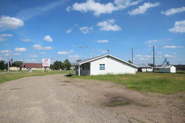 164 W Morrison Street, Motley, MN 56466 (#6087103) :: The Pietig Properties Group