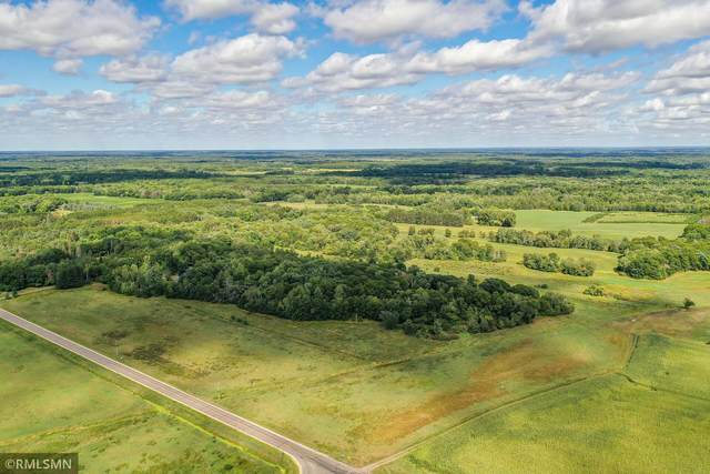 XXXXX Durant, East Bethel, MN 55011 (#6087219) :: Twin Cities Elite Real Estate Group | TheMLSonline