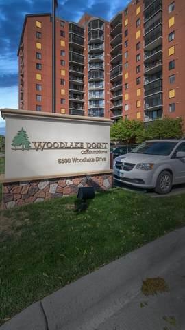 6500 Woodlake Drive #408, Richfield, MN 55423 (#6087459) :: Holz Group