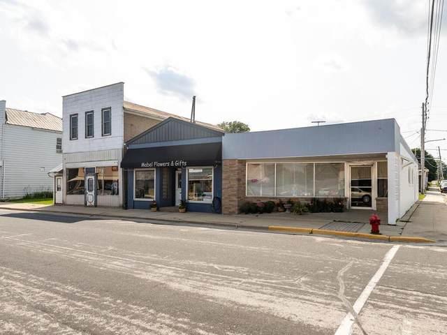 105 Main Street S, Mabel, MN 55954 (#6088030) :: Carol Nelson | Edina Realty