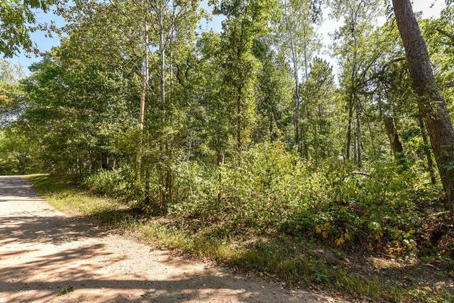 TBD Government Drive, Pequot Lakes, MN 56472 (#6089833) :: The Pietig Properties Group
