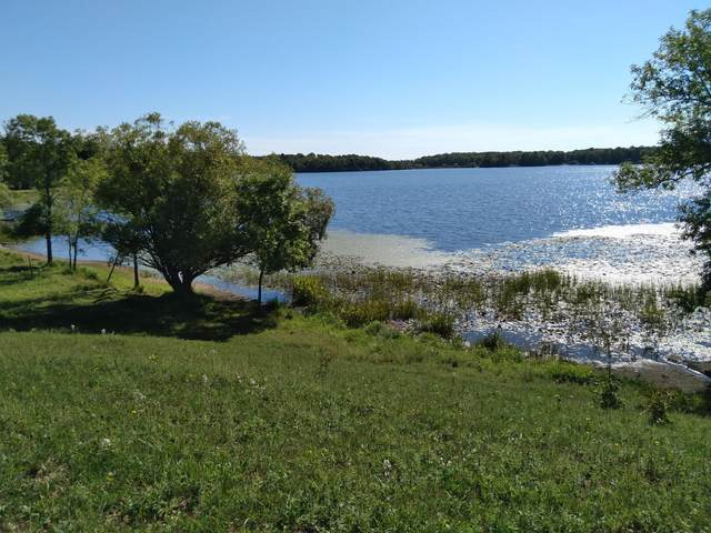 Tract F County Road 10, Deerwood, MN 56444 (#6090797) :: The Pietig Properties Group