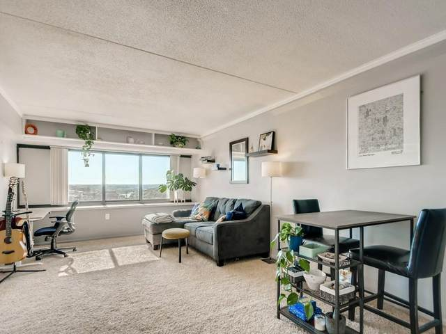 1920 S 1st Street #1407, Minneapolis, MN 55454 (#6093779) :: Lakes Country Realty LLC