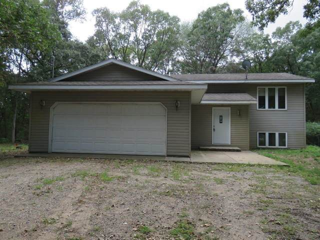 7172 100th Avenue SE, Clear Lake, MN 55319 (#6094217) :: Reliance Realty Advisers