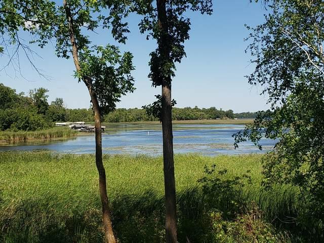 TBD Ida, Ida Twp, MN 56308 (#6096089) :: Lakes Country Realty LLC