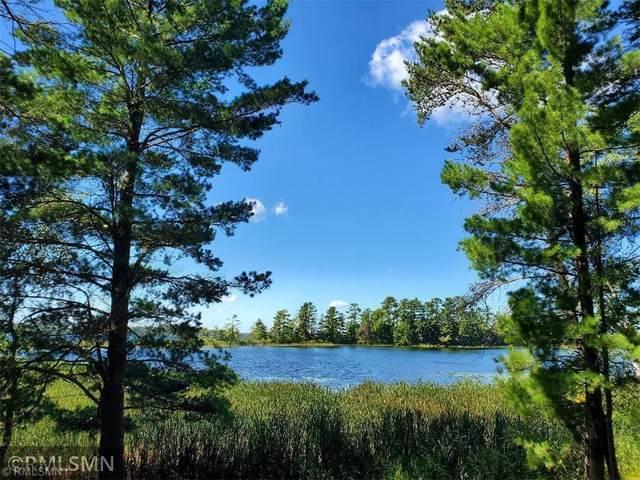 XXXXX Liedlwood Lane, Pequot Lakes, MN 56472 (#6096527) :: The Pietig Properties Group