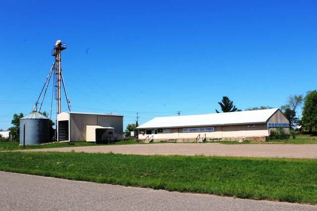 208 13th Avenue NW, Little Falls, MN 56345 (#6097306) :: Holz Group