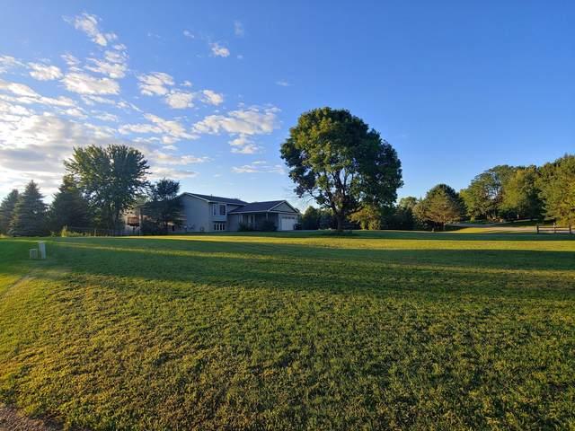 14164 Davenport Street NE, Ham Lake, MN 55304 (#6097423) :: Twin Cities Elite Real Estate Group   TheMLSonline