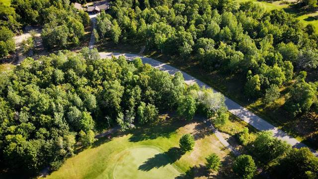 Lot 12 Blk 1 Eagle Drive NW, Walker, MN 56484 (#6098207) :: The Twin Cities Team