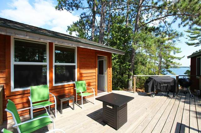 2050 Shipman Island, Ely, MN 55731 (#6098965) :: The Twin Cities Team