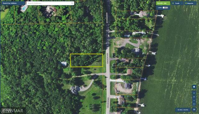 TBD Shorewood Drive, Detroit Lakes, MN 56501 (MLS #6099051) :: RE/MAX Signature Properties
