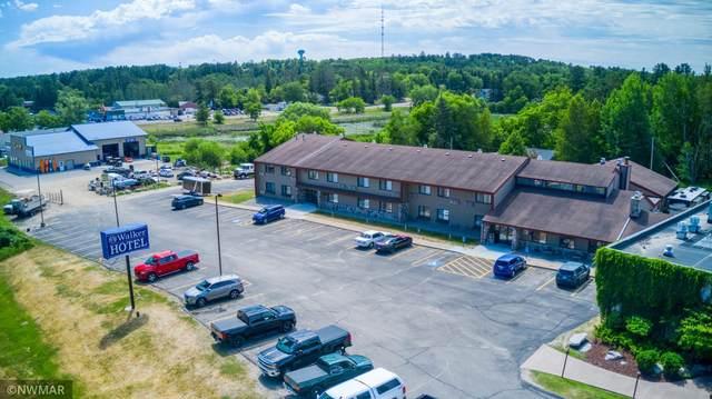 907 Minnesota Avenue, Walker, MN 56484 (#6100171) :: Holz Group