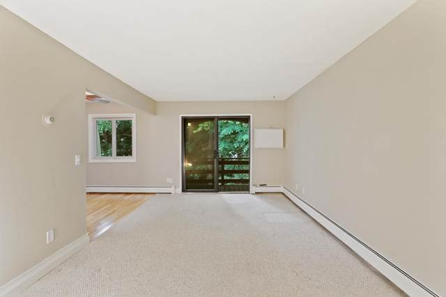 4407 Wilshire Boulevard #309, Mound, MN 55364 (#6101136) :: Lakes Country Realty LLC