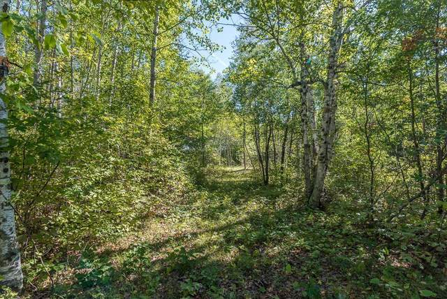 TBD Tract D Little Pine Road, Brainerd, MN 56401 (#6101374) :: The Pietig Properties Group