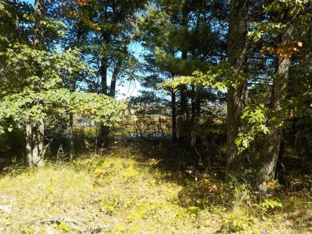 0 Long Lake Road, Danbury, WI 54830 (#6102082) :: Carol Nelson | Edina Realty