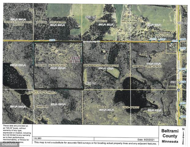 22380 New Maple Ridge NE, Blackduck, MN 56630 (#6102591) :: The Duddingston Group