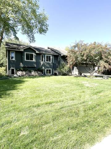 8739 Norwood Lane N, Maple Grove, MN 55369 (#6103003) :: The Janetkhan Group