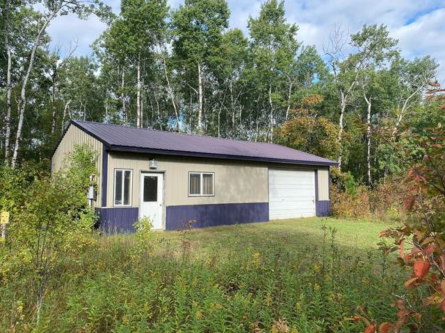 TBD 219th Avenue, Park Rapids, MN 56470 (#6103299) :: The Preferred Home Team