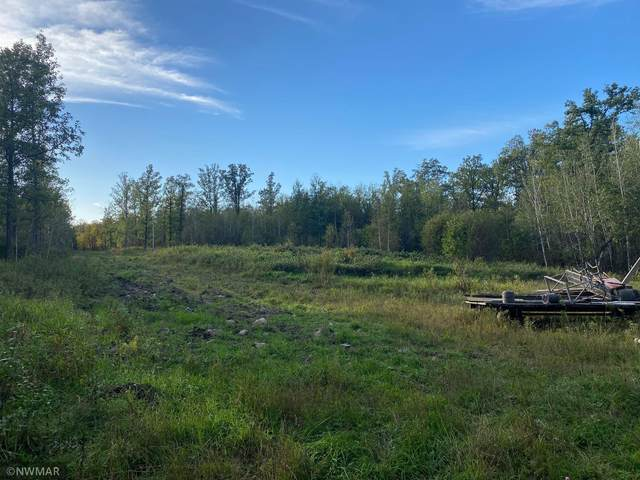 TBD Hwy 71, Guthrie Twp, MN 56461 (#6103528) :: The Janetkhan Group
