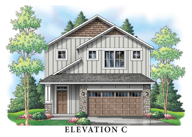 4233 141st Lane NW, Andover, MN 55304 (#6104272) :: Twin Cities Elite Real Estate Group | TheMLSonline