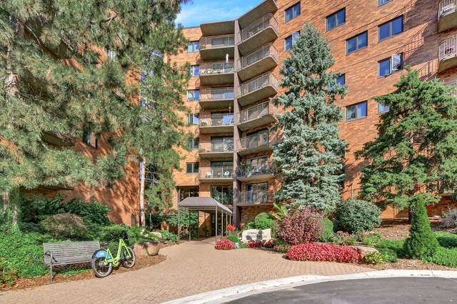 210 W Grant Street #101, Minneapolis, MN 55403 (#6104375) :: Holz Group