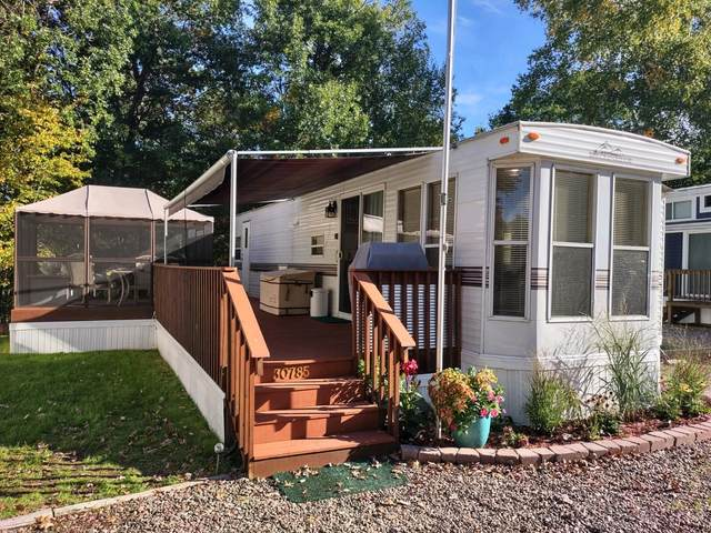 30785 Cougar Pass, Breezy Point, MN 56472 (#6105026) :: Twin Cities Elite Real Estate Group | TheMLSonline