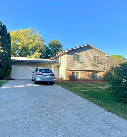 1153 Bucher Avenue, Shoreview, MN 55126 (#6105085) :: Twin Cities Elite Real Estate Group | TheMLSonline