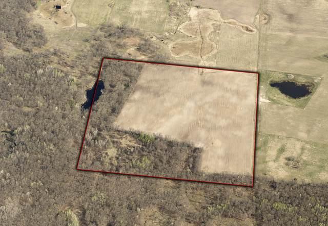 TBD 20th Street Lane, Fort Ripley, MN 56449 (MLS #6105266) :: RE/MAX Signature Properties