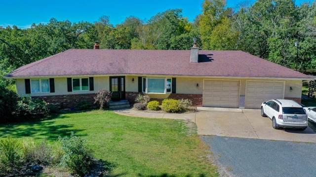 19570 Flamingo Street NW, Oak Grove, MN 55011 (MLS #6105329) :: RE/MAX Signature Properties