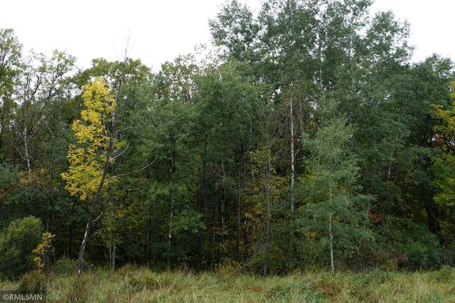 XXX 100TH Street SW, May Twp, MN 56473 (#6105401) :: Reliance Realty Advisers