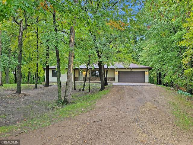 34807 Tungsten Street NW, Princeton, MN 55371 (#6105411) :: Reliance Realty Advisers